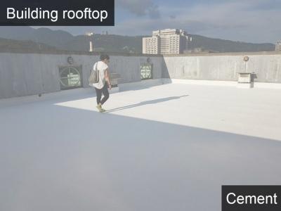 Building rooftop